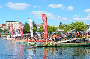 Barrie Dragon Boat Festival 2013-12